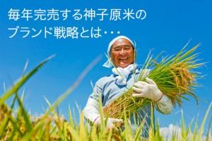 大人気で入手困難な神子原(みこはら)米に学ぶブランド戦略